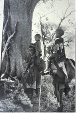 women-at-mongongo-groves-copy3